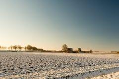 Niederländische landwirtschaftliche Landschaft in der Winterzeit Lizenzfreies Stockfoto