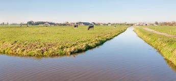 Niederländische Polderlandschaft im Herbst Stockbild