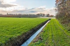 Niederländische Polderlandschaft mit einem diagonalen Abzugsgraben Lizenzfreie Stockbilder