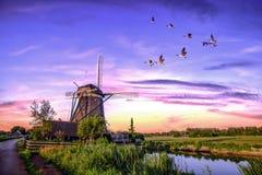 Niederländische Sonnenaufgang-Windmühlen Stockfotos
