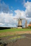 Niederländische Windmühle Stockfotografie