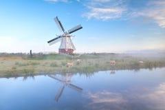 Niederländische Windmühle am nebelhaften Morgen Lizenzfreies Stockbild