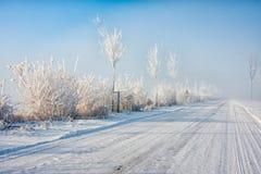 Niederländische Winterlandschaft mit dem countryroad und Bäumen bedeckt mit Reif Lizenzfreies Stockbild