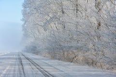 Niederländische Winterlandschaft mit dem countryroad und Bäumen bedeckt mit Reif Lizenzfreie Stockbilder