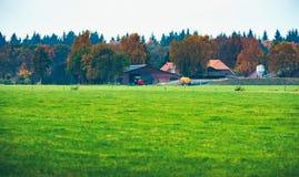 Niederländischer Bauernhof mit Feld im Front- und Herbstwald Lizenzfreie Stockbilder