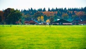 Niederländischer Bauernhof mit Feld im Front- und Herbstwald im Hintergrund Stockfotos