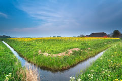 Niederländisches Ackerland im Frühjahr Lizenzfreie Stockbilder
