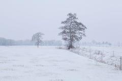 Niederländisches Ackerland im Winter Stockfotos