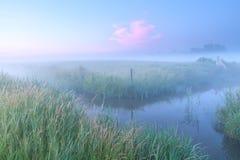 Niederländisches Ackerland mit Fluss am nebeligen Morgen Stockfotografie