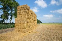 Niederländisches Ackerland mit Heuschober an geerntetem Weizenfeld Stockbilder