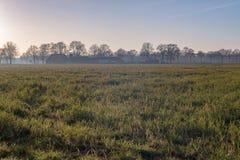 Niederländisches breites offenes Ackerland mit Bauernhof im Winter Achterhoek Gelder Stockbilder