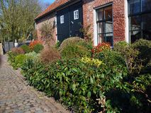 Niederländisches Haus mit grünem Blumenbeet Stockfotografie