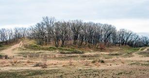 Niederländisches Naturreservat mit Sanddünen Lizenzfreies Stockbild
