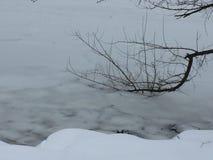 Niederlassung begraben in den gefrorenen Fluss Stockbild
