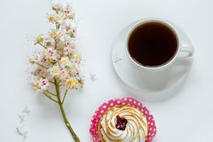 Niederlassung der blühenden Kastanie, des Zitronenkuchens und der Kaffeetasse auf einem weißen Hintergrund lizenzfreie stockfotos