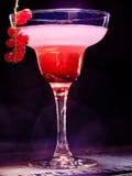 Niederlassung 89 der Cocktaildekoration rote Johannisbeer Lizenzfreie Stockbilder