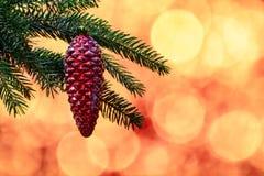 Niederlassung der Fichte mit rotem Weihnachtsspielzeug lizenzfreie stockbilder