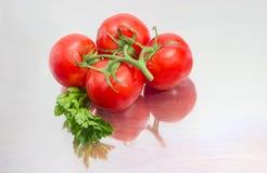 Niederlassung der reifen roten Tomaten und des Petersilienzweigs Stockfotos