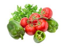 Niederlassung der Tomaten, grünen des grünen Pfeffers und der Petersilie Stockfotos