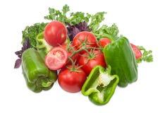 Niederlassung der Tomaten, grünen des grünen Pfeffers und des Grüns Lizenzfreie Stockfotografie