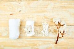 Niederlassung des Baumwollstrauches, ohrige Stöcke, Baumwollauflagen lizenzfreies stockfoto