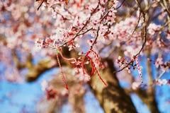 Niederlassung des bl?henden Kirschbaums mit rotem und wei?em martisor lizenzfreie stockbilder