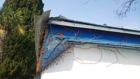 Niederlassung des Efeus im Winter ohne Laub entlang dem Dach des Hauses Stockbild