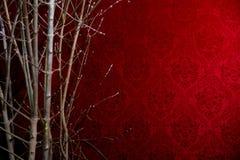 Niederlassung eines Baums auf einem roten Hintergrund mit einem Muster Lizenzfreies Stockbild