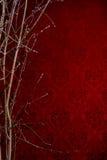 Niederlassung eines Baums auf einem roten Hintergrund mit einem Muster Hintergrund Stockfoto
