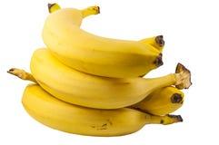 Niederlassung von Bananen Stockbilder