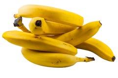 Niederlassung von Bananen Stockfoto