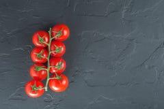 Niederlassung von kleinen Tomaten auf einem schwarzen Stein Lizenzfreie Stockfotografie