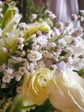 Niederlassung von weißem Gypsophilas unter Rosen und Blume lizenzfreies stockfoto