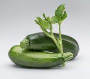 Niederlassung von Zucchini mit Blättern und ganzer grüner Zucchini zwei auf Weiß, lokalisiert Lizenzfreies Stockfoto