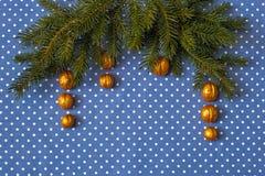 Niederlassungen der Fichte mit vergoldeten Nüssen auf einem Hintergrund des Stoffes in den Tupfen Stockbild