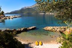 Niederlassungen der Olivenbaum- und Meerblickansicht, Sommer in Griechenland Lizenzfreie Stockfotografie