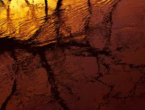 Niederlassungen des Baums gegen Sonnenuntergang und Reflexion im Wasser Stockfotografie