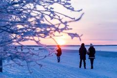 Niederlassungen umfasst mit Reif und Schattenbildern von den Leuten, die voran zur Sonne am eisigen Tag gehen Harte Fröste des Ko Stockfotos