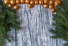 Niederlassungen von Tannenbäumen mit Weihnachtsverzierungen von vergoldeten Nüssen auf einem Hintergrund von alten Holzverkleidun Lizenzfreies Stockfoto