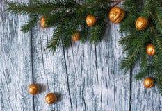 Niederlassungen von Tannenbäumen mit Weihnachtsverzierungen von vergoldeten Nüssen auf einem Hintergrund von alten Holzverkleidun Lizenzfreie Stockbilder