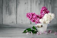 Niederlassungen werden lila in einem Korb auf dem Hintergrund von hölzernen Brettern gefärbt Stockbild