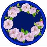 Niederlassungsmandelblumen in einem Kreis stockbild