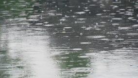 Niederschlag auf dem Fluss stock footage