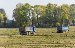 Dump truck on the construction site. Niedomice, Poland - October 19, 2017: Dump truck on the construction site royalty free stock images