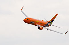 Niedrige Luftparade mit Mango-Luft stockbild