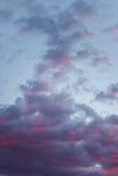 Niedrige Winkelsicht des purpurroten Himmels Lizenzfreie Stockbilder