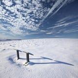 Niedrige Wintersonnenrührstangen über frischem Schnee Lizenzfreies Stockbild