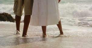 Niedriger Abschnitt von den Afroamerikanerpaaren, die zusammen auf dem Strand 4k stehen stock video