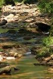 Niedriger Nebenfluss Stockbild