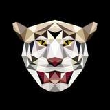 Niedriger Polygonhauptvektor des Tigers Stockbild